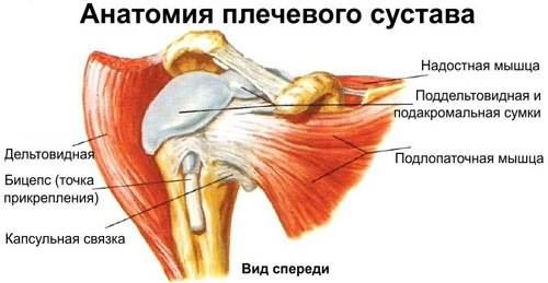 Эпикондилит плеча (плечевого сустава)