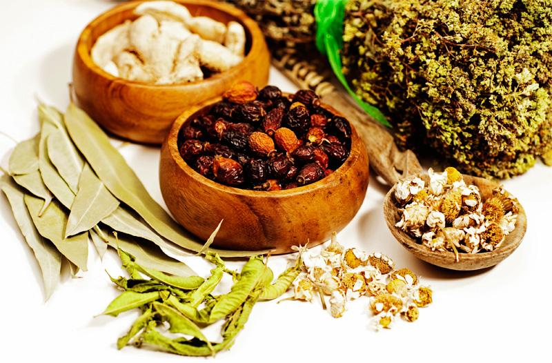 Лечение эхинококкоза народными средствами