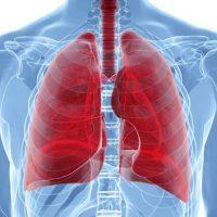 21456 Причины и симптомы эхинококкоза легких