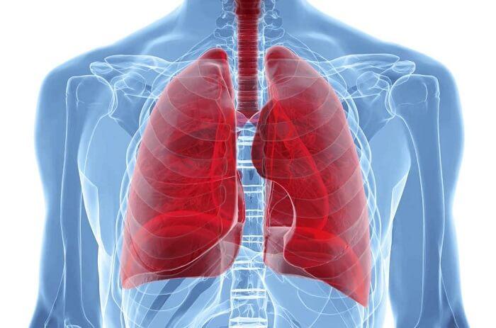 Причины и симптомы эхинококкоза легких