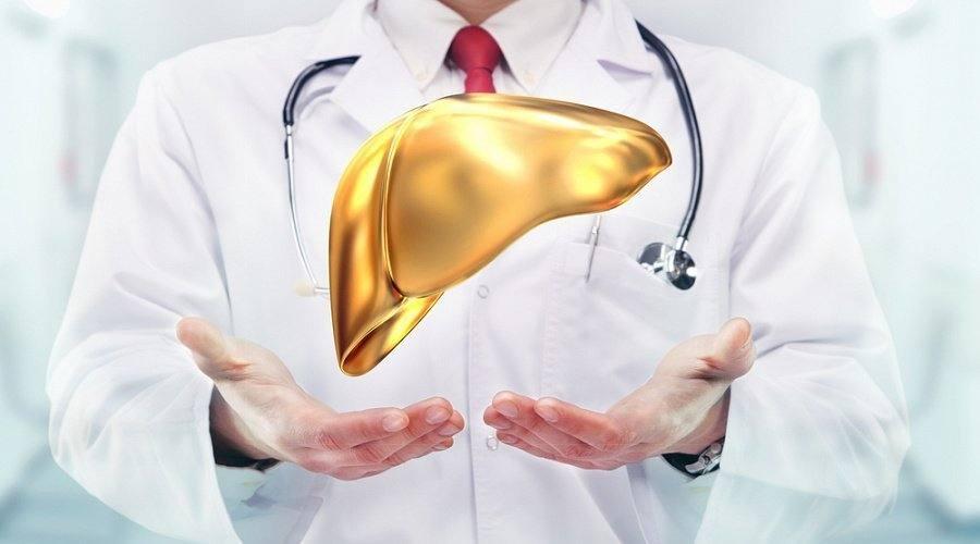 Гепатопротекторы – лекарства для лечения печени