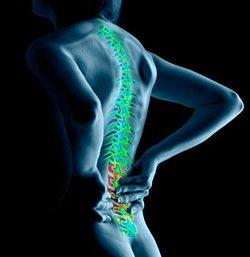 22769 Причины и симптомы хондроза