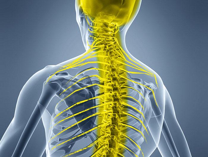22800 Симптомы и лечение грудного хондроза